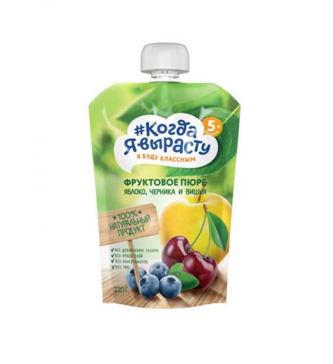 Когда я Вырасту яблоко, вишня, черника 220 гр, без сахара - 5мес+